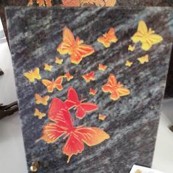 Papillon orangé